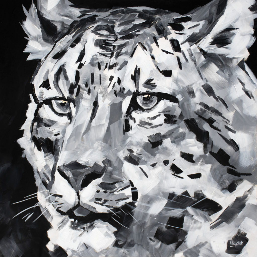 Animaux en Noir et Blanc
